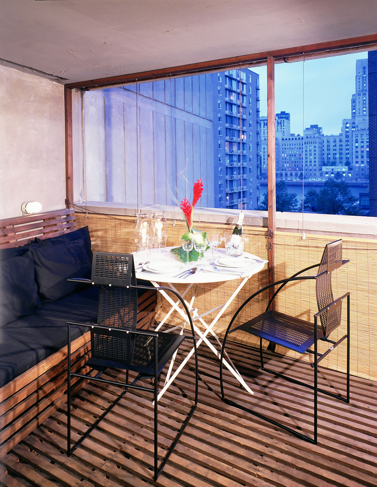 Roosevelt Island Apartment View 9; Photo: Elliot Fine