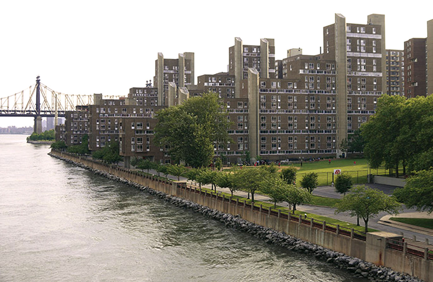 Roosevelt Island Apartment; Eastwood View