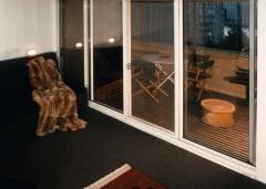 Roosevelt Island Apartment View 7
